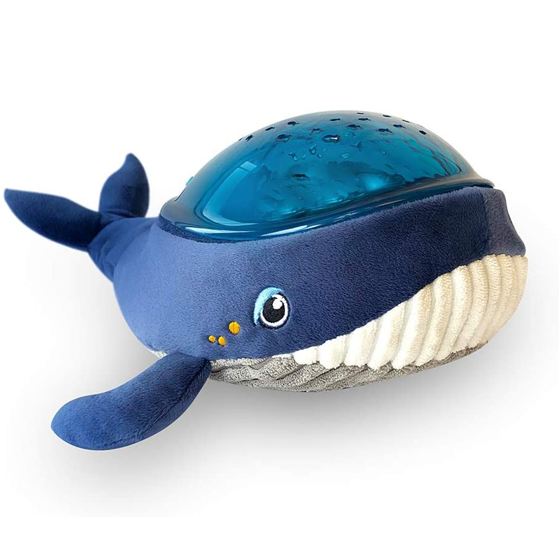 pabobo walvis projector